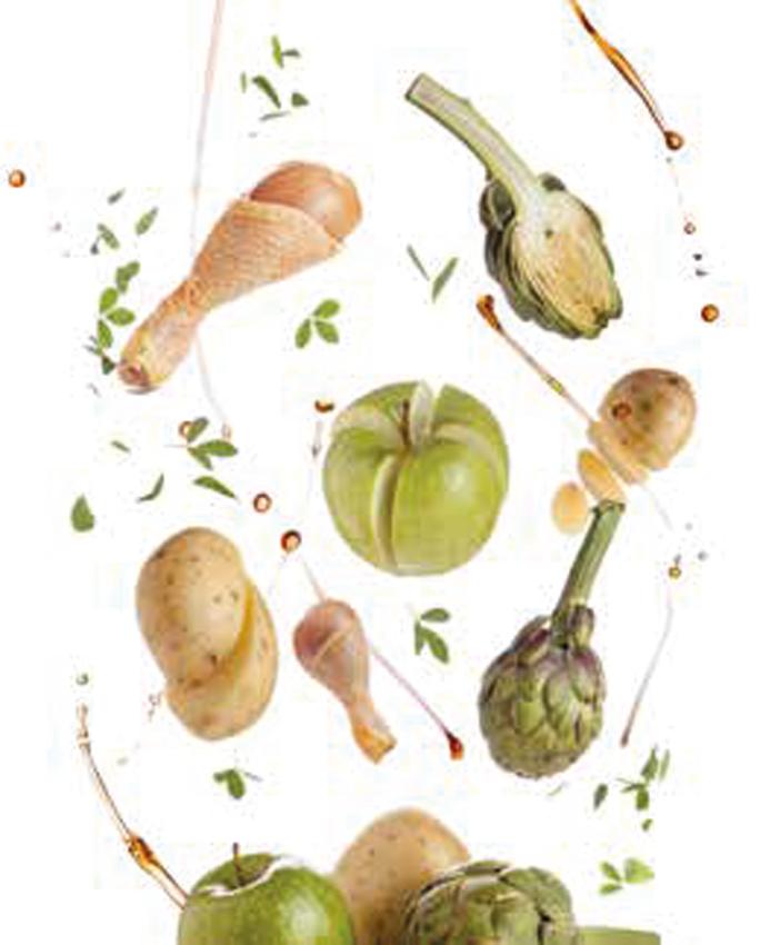 nutrition micro active - Natura diet Grain Free - Alimentation naturelle