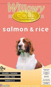 Willowy Gold Saumon et riz